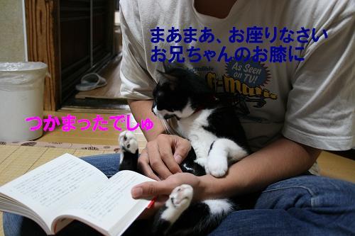 IMG_1034あ