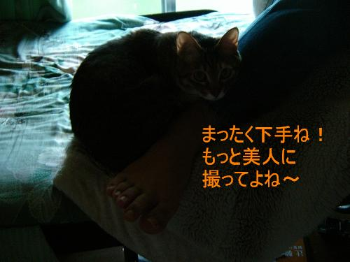 DSC01941.jpg