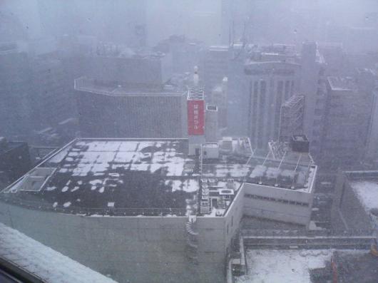 雪の桜橋ボウル