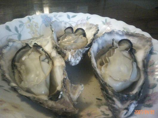 日生の牡蠣2
