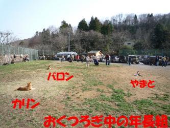 bP1050941.jpg