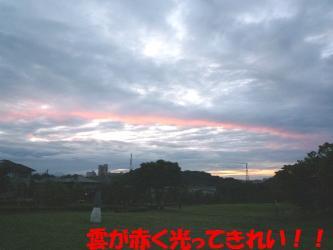 bP1070444.jpg