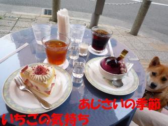 bP1070633.jpg