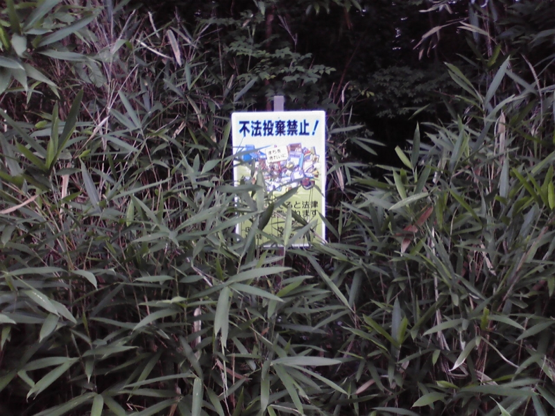 P1000154_s.jpg