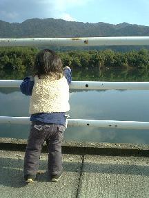 ふしの川 後姿