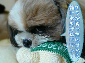 yamabaton6.jpg
