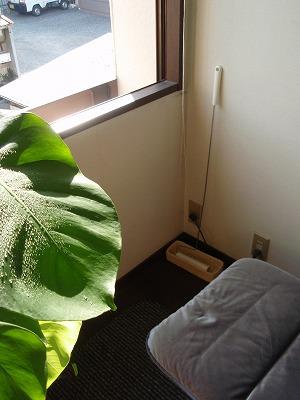 植物 012