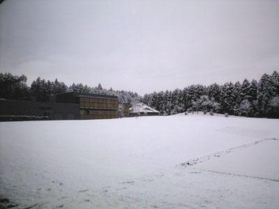 2008-3-5-1.jpg