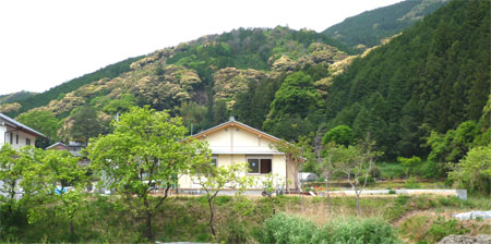 2008-5-2-5.jpg