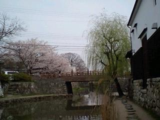 080409_24hori_k.jpg