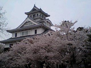 080409_75nagahama_o.jpg