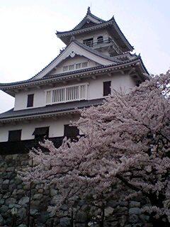 080409_91nagahama_k.jpg