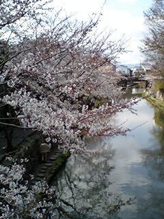 405_hachiman_03.jpg