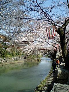405_hachiman_13.jpg