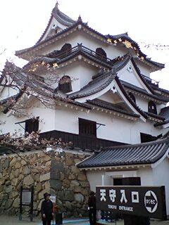 405_hikone_06_tensyu.jpg