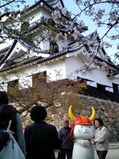 405_hikonyan_01.jpg