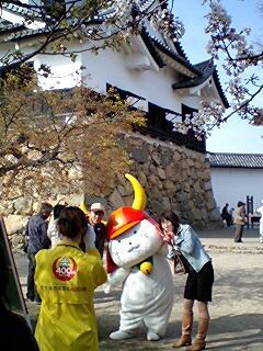405_hikonyan_02.jpg