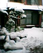 k_yuki2006_12_29.jpg