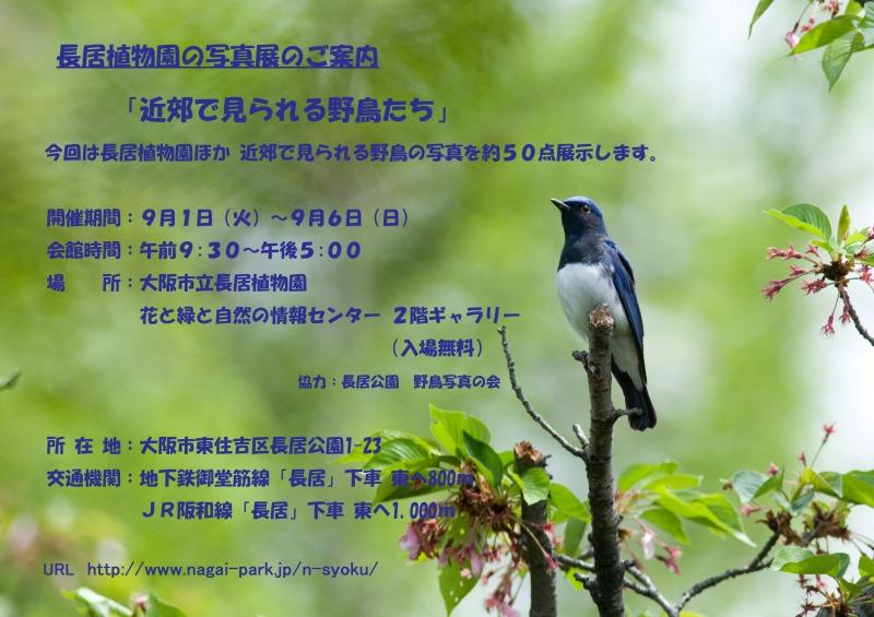 b3-7464_edited-4.jpg