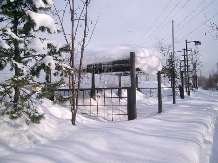 2007年・冬景色