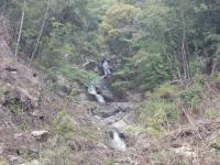 入渓点の小滝群