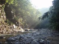 早朝の渓谷