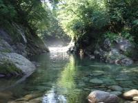 自然プール