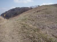 快適な牧野道