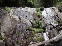 20m衝立滝