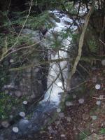 取水堤下の8m滝