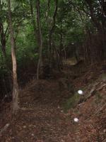 目丸山の青石登山道