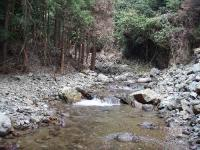 荒れた下流の渓相