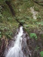 岩間から吹き出す水