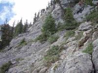 40m左上のスラブ状の岩場