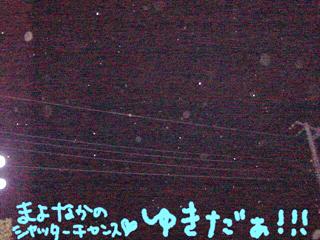 20050218165514.jpg