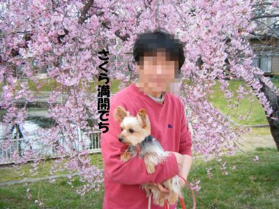 DSCF0319_convert_20090412194653.jpg