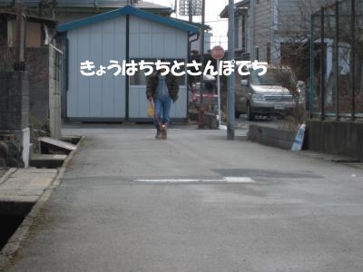 IMG_00258_convert_20090301193728.jpg