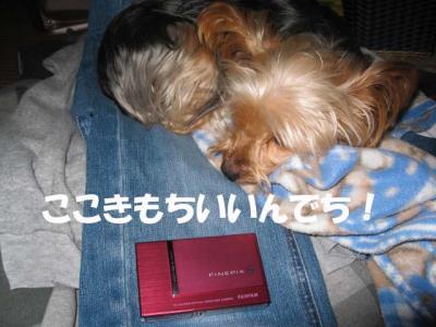 couple_convert_20090318202223.jpg