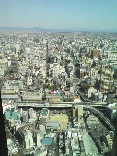 46階からの眺めは最高♪