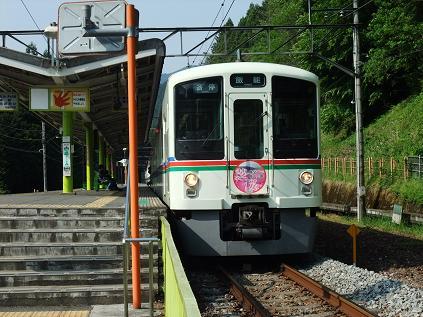 西武鉄道4000系芝桜号