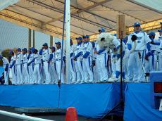 lions05402.jpg
