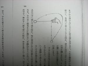 CIMG2558.jpg
