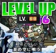 Maple60LV.jpg