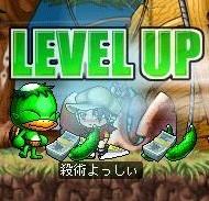 Maple70LV.jpg