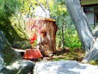金稜辺と丸太巣箱H210426