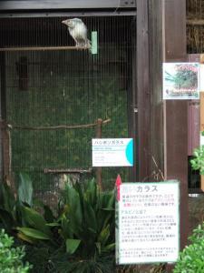 yozero_20090524_013.jpg