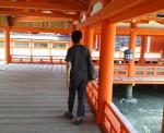 厳島神社をあるくみっちゃん