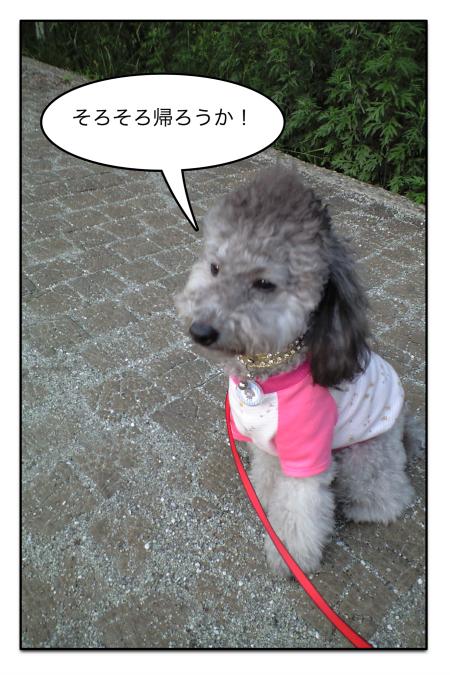 sanpo_3.jpg