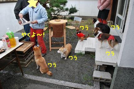 DSC_0050-2.jpg