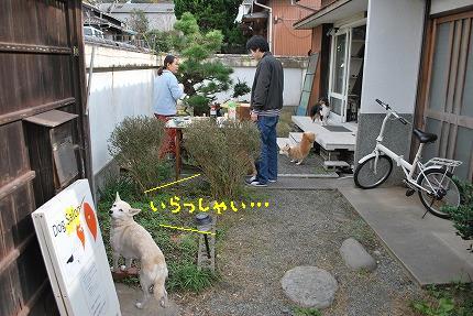 DSC_0057-2.jpg